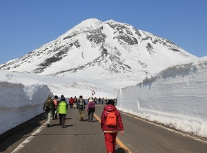 Snow wall in spring at Shiretoko Pass